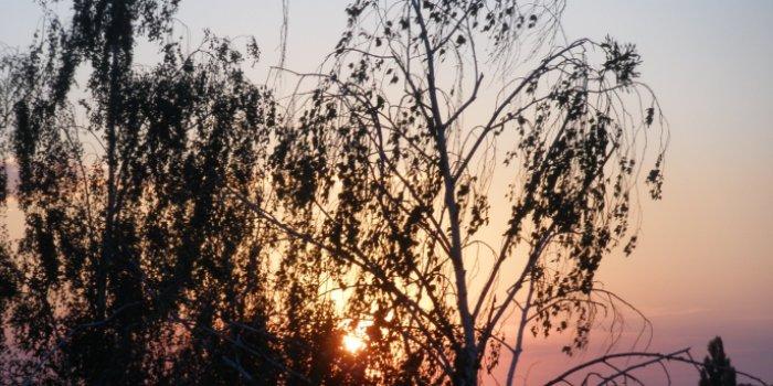 Захід сонця на Київщині