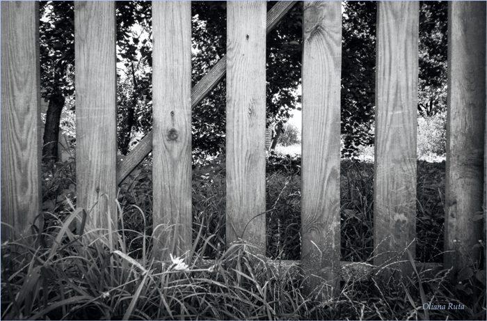 Паркан дерев'яний