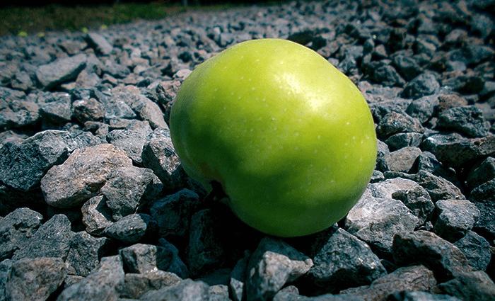 Зелене яблуко з відблиском сонця лежить на камінні